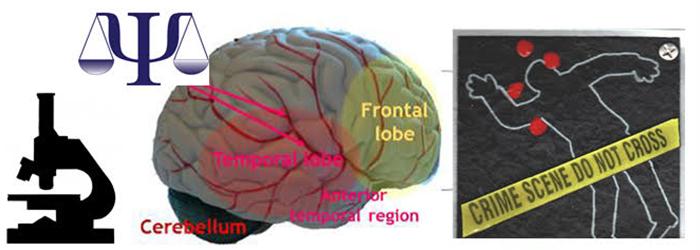 Forensic Neurobiology Underlying Violent Criminal Behavior