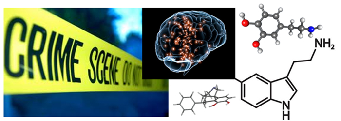 Monoamines & Violent Criminal Behavior
